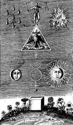 Еще некоторые важные секреты спагирии и алхимии можно увидеть на этой гравюре